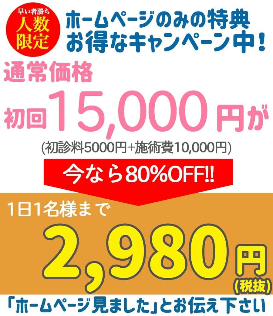 ホームページのみの特典価格通行10000円が2980円