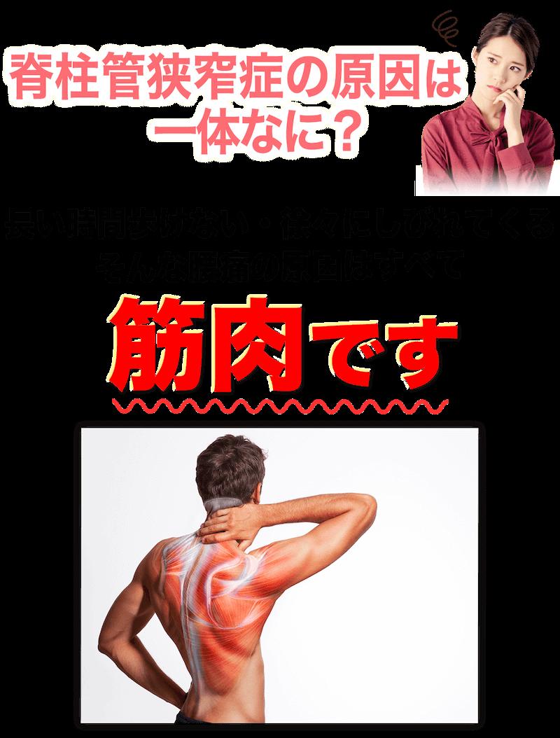 脊柱管狭窄症の原因は一体何?